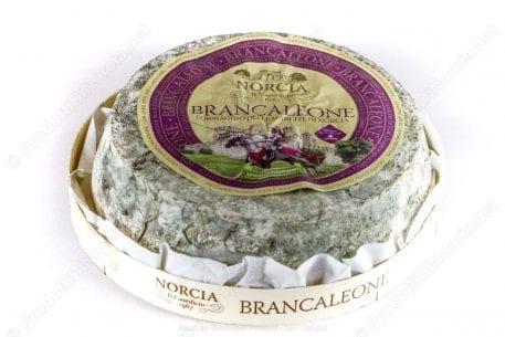 Brancaleone Misto di Norcia